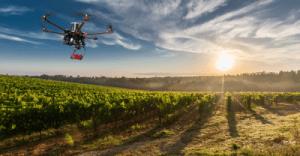 Uso de la tecnología dron y posterior procesado de datos