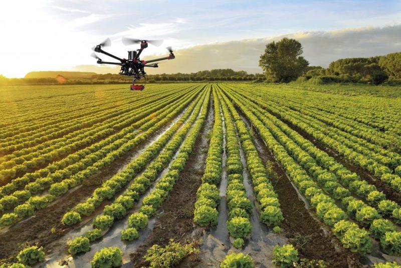 Teledetección agrícola