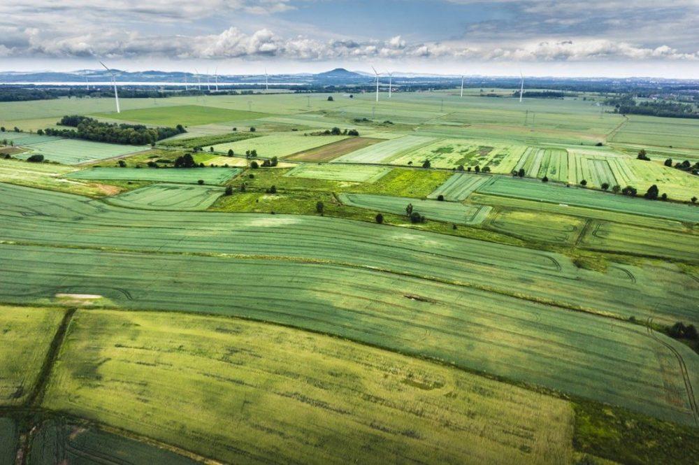 Proyectos de ordenación del territorio