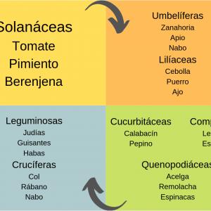 Asesoramiento agrícola en Murcia y Castilla y León