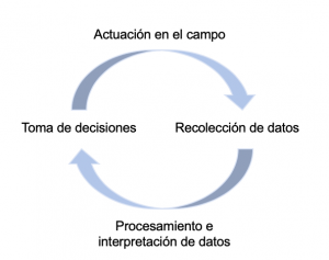 Ciclo de la agricultura de precisión