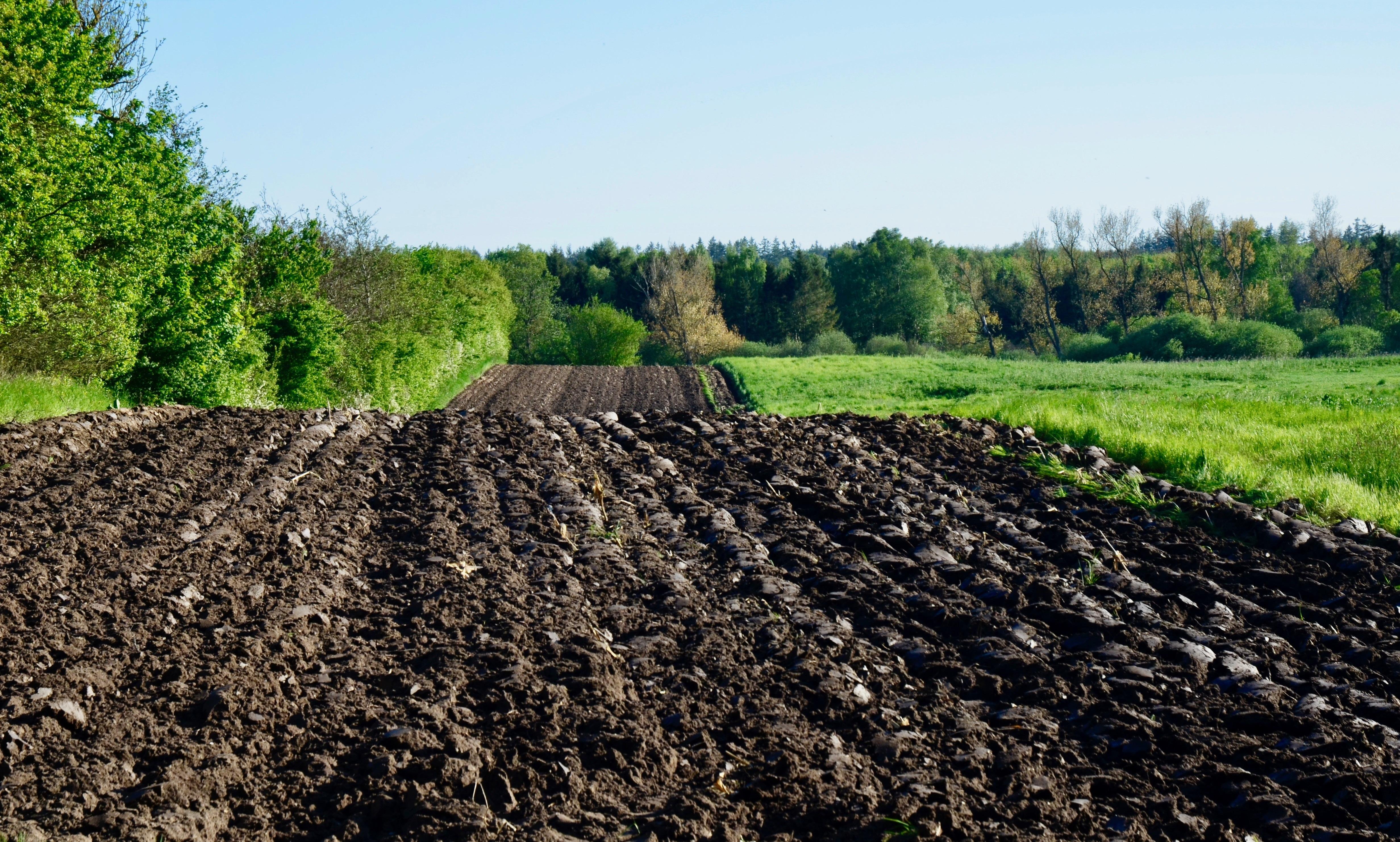 Materia orgánica e importancia en agricultura
